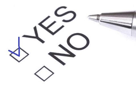 yes-no checkbox